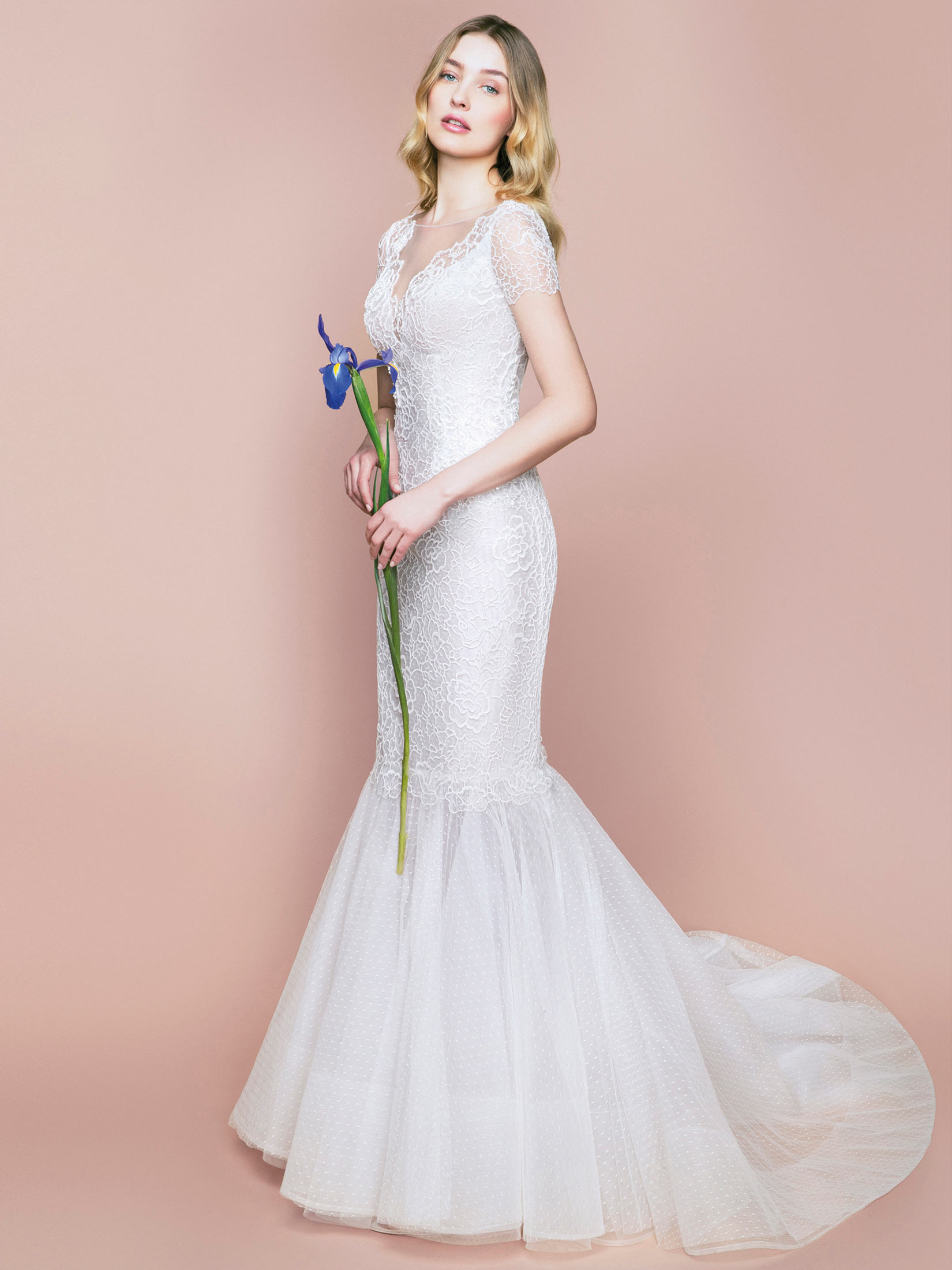 Bridal Collection Online Now | Blumarine ®