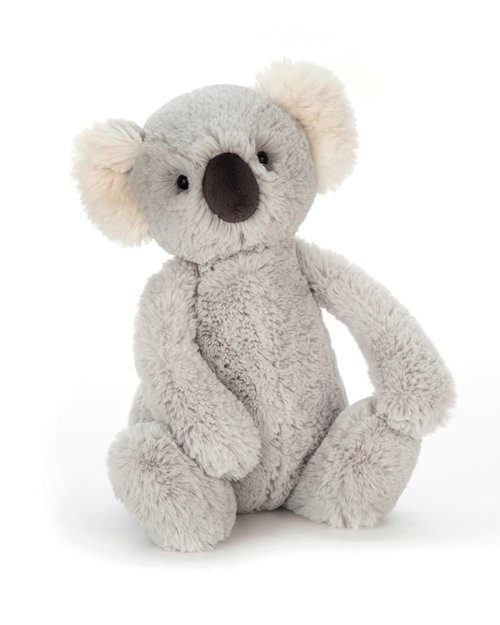 Bashful Koala - Medium