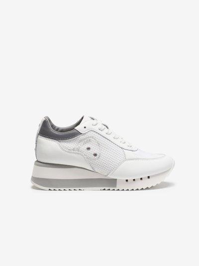Charlotte Sneakers