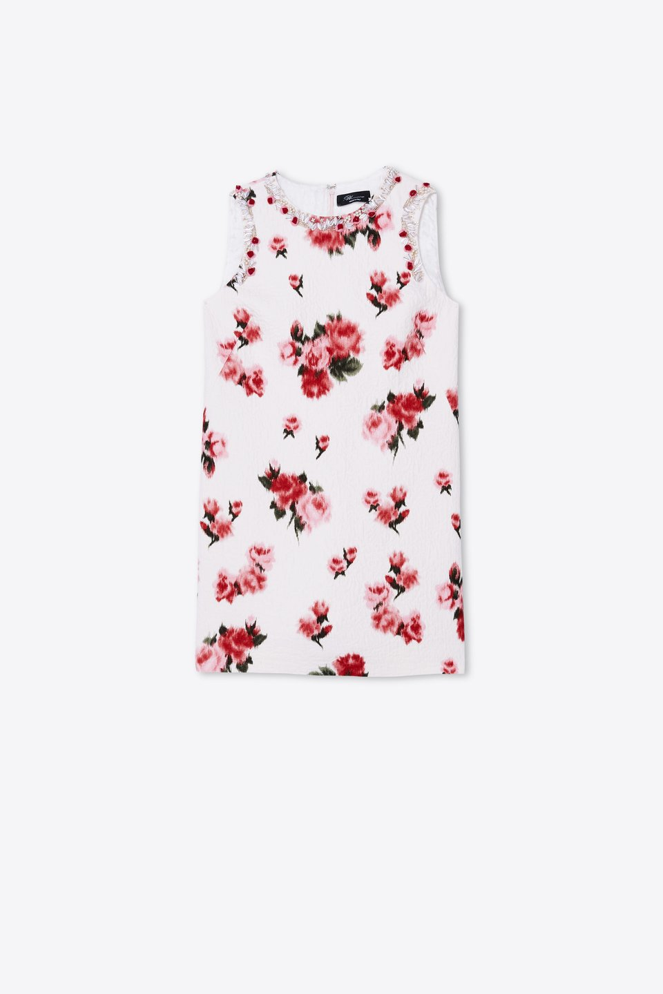 Rose print dress with embroidery