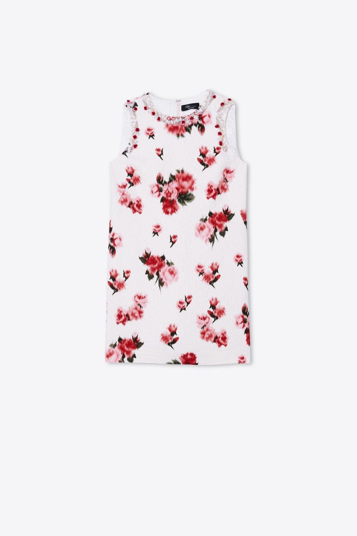 Kleid mit Rosen-Print und Stickerei