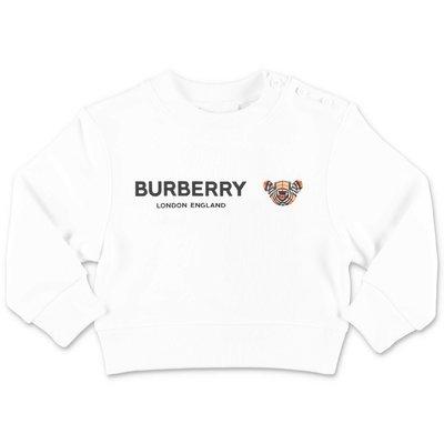 ضياء BEAR القطن الأبيض BURBERRY النوع الثقيل