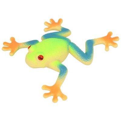 Stretchy Beanie Red Eye Tree Frog