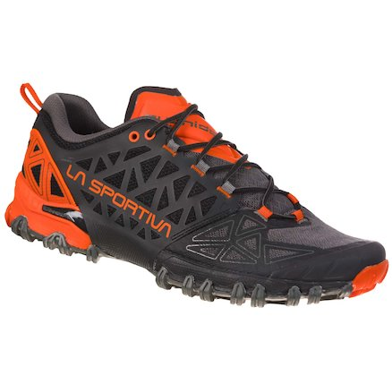 Mountain & Trail Running Shoes for men (GTX options) - MALE - Bushido II - Image