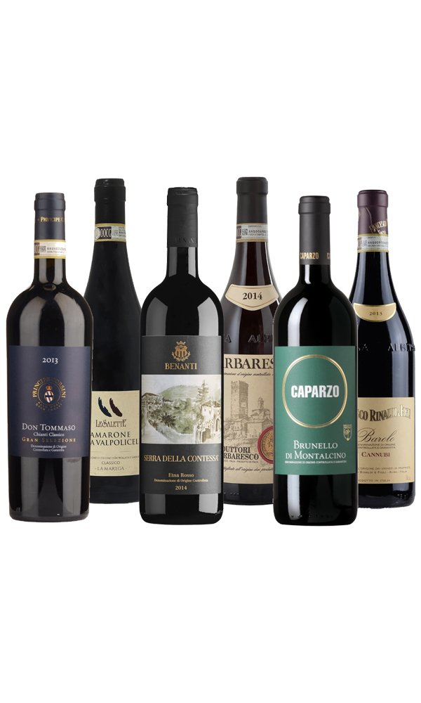 Libiamo - Fine Italian Red Wines (Case of 6) - Libiamo