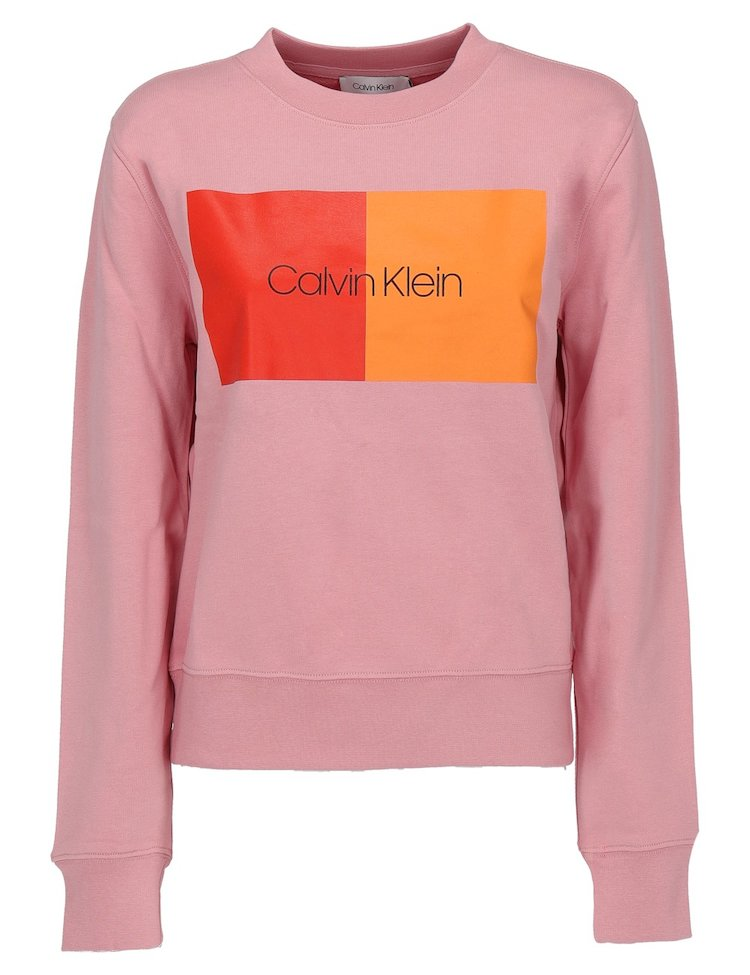 Cotton Sweatshirt With Logo