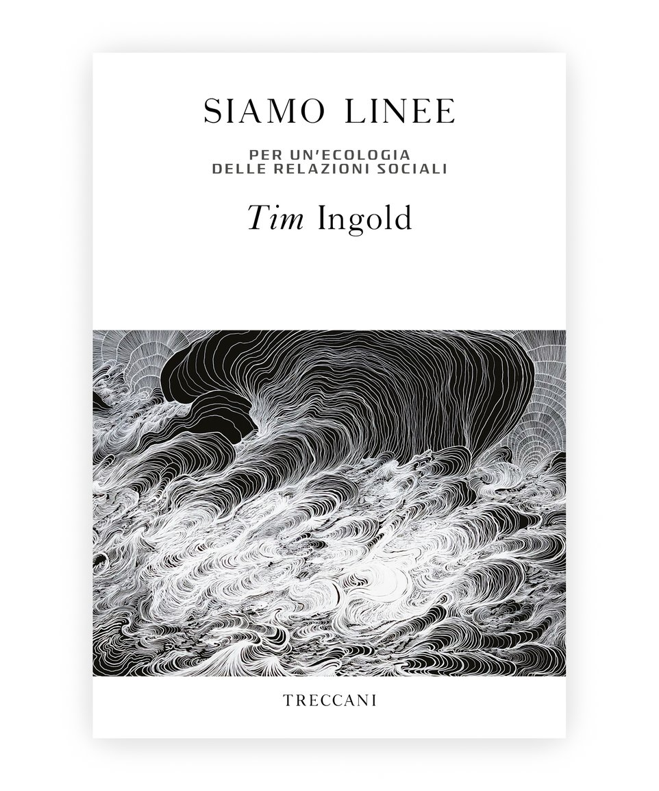 Siamo linee / We are lines. Towards an ecology of social relationships, by Tim Ingolg