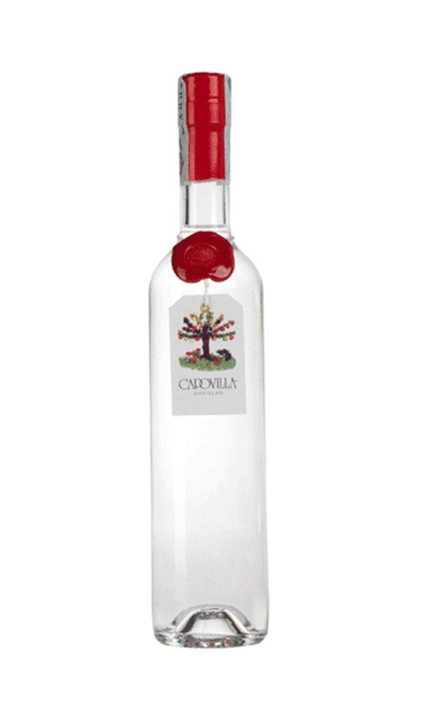 Libiamo - Grappa di Amarone by Capovilla Distillati (Italian Grappa - 500 ml) - Libiamo