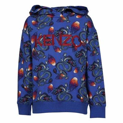 Blue logo detail cotton jersey hoodie